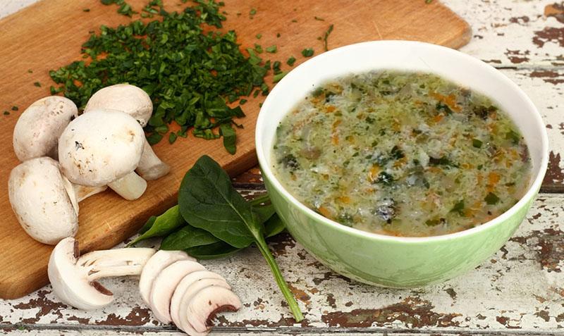 щавелевый суп с грибами